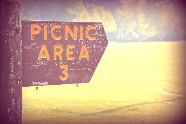 Picnic At Doctors Park