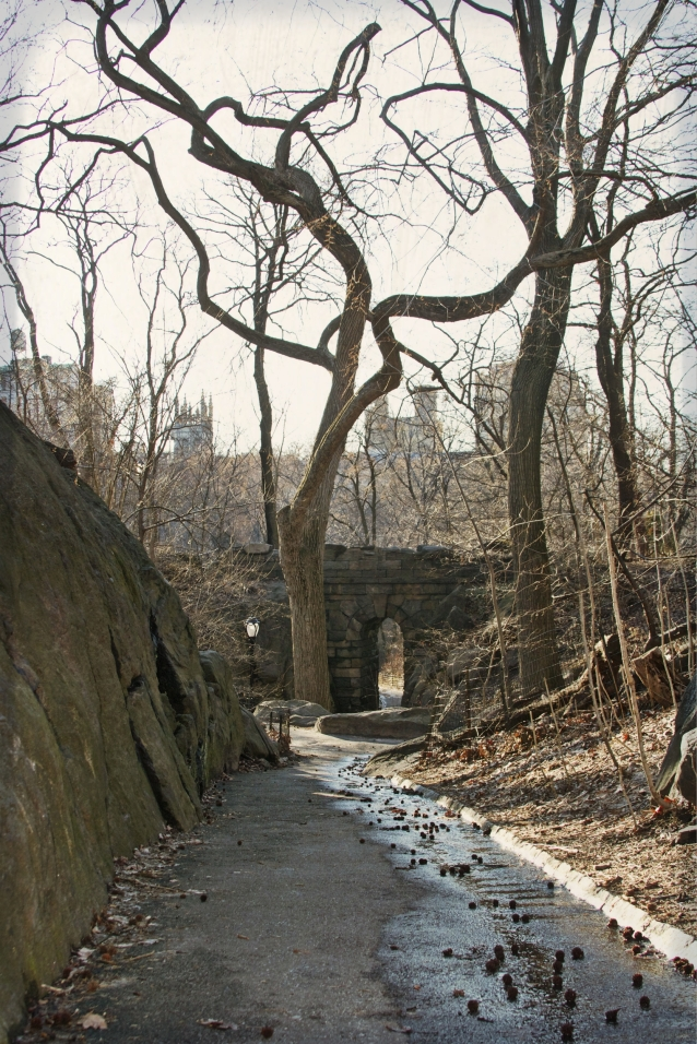 central_park_nature_best_park_ny