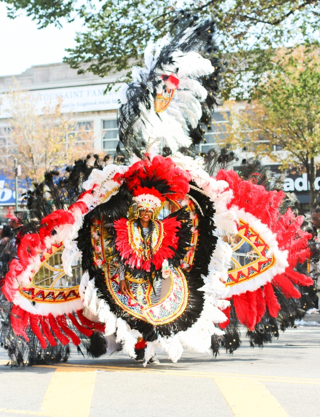 western_indian_carribbean_festival_costumes_carnival-11